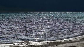Flashes on Lake Shore. Sun shines and reflects onto the surface of water in thousands of shimmering flashes stock video footage