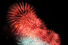 Flashes of pink and white holiday firework against the black sky Royalty Free Stock Image
