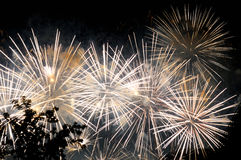 Flashes of white salute fireworks against the black sky. Royalty Free Stock Photography