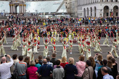 Flashmob Poppies of memory in Kyiv Royalty Free Stock Image