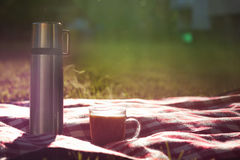 Flask of tea or coffee on picnic blanket Stock Images