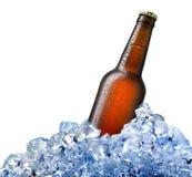 Flaska av öl i is arkivfoto