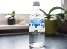 Flaska av Absolut vodka på diskbänken Arkivfoto