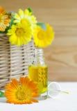 Flaska av calendulaolja (extrakt för krukaringblomma, tinktur, avkoken) Royaltyfri Bild