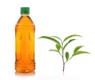 Flaska av iste och grönt te Royaltyfria Bilder