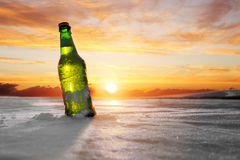 Flaska av kallt öl royaltyfri bild