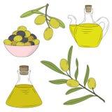 Flaska av olja och filialen av olivträdet Arkivbilder