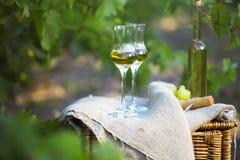 Flaska av starksprit eller grappa och exponeringsglas med gruppen av druvor royaltyfri bild
