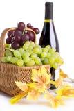 Flaska av vin med druvor i korg Arkivbild