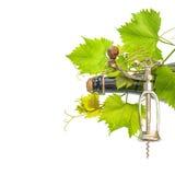 Flaska av vin med korkskruvet och nya gröna vinrankasidor Arkivbild