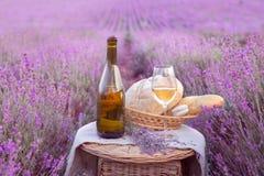 Flaska av vin mot lavendel Royaltyfria Foton