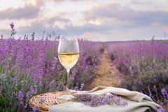 Flaska av vin mot lavendel Arkivbilder