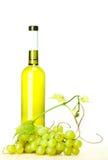 Flaska av vit wine och gröna druvor Royaltyfri Fotografi