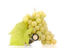 Flaska av wine med gröna druvor arkivbild
