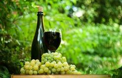 Flaska av wine och nya gröna druvor Royaltyfri Bild