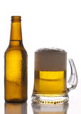 Flaska och exponeringsglas av öl royaltyfri bild