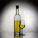 Flaska och exponeringsglas av calvados royaltyfri bild