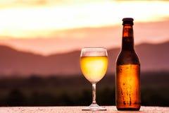 Flaska och exponeringsglas av det ljusa biet Royaltyfri Bild