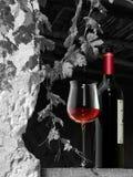 Flaska och exponeringsglas av röd vind med vinsidor i ett skydd royaltyfri fotografi