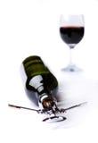 Flaska och exponeringsglas av wine Royaltyfri Bild