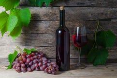 Flaska och exponeringsglas för vin för druvavinranka med vin Royaltyfri Foto