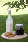 Flaskan av mjölkar Fotografering för Bildbyråer