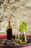 Flaskan av rött och vitt vin med exponeringsglas och druvor arkivbild