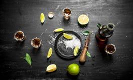 Flaskan av tequilaen med skottexponeringsglas, ny limefrukt och saltar royaltyfria bilder