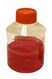 flaskan isolerade laboratoriumplast- royaltyfri bild