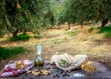 Flaskan med extra jungfrulig olivolja, oliv, en ny filial av olivträdet och cretanskorpadakos stänger sig upp på trätabellen arkivbild