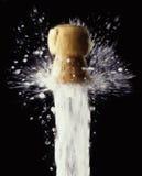 flaskchampagne Arkivbild