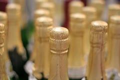 flaskchampagne Royaltyfria Bilder