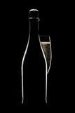 flaskchampagneexponeringsglas Fotografering för Bildbyråer