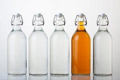 flaskexponeringsglas Royaltyfri Bild