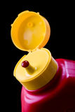 flaskketchup royaltyfri bild
