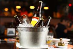 Flaskor av öl i hink med is royaltyfri bild