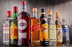 Flaskor av blandade globala starkspritmärken Royaltyfria Foton
