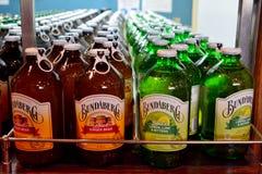Flaskor av Bundaberg läskedryck smaksatt med växtextrakt i kylskåp royaltyfri fotografi