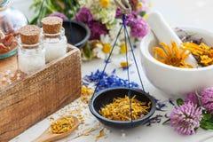 Flaskor av homeopatismå kulor, våg och mortel av örter Arkivbild