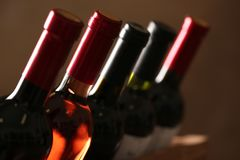 Flaskor av olika viner Dyr samling royaltyfri bild