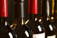 Flaskor av olika viner Dyr samling royaltyfri foto