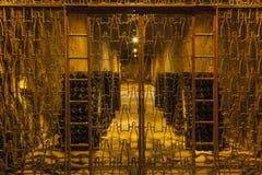 Flaskor av vin i vinodlingen Royaltyfri Foto