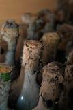 Flaskor av vin med långsiktig lagring Royaltyfri Foto
