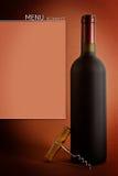 Flaskor av wine Arkivfoto