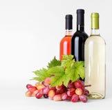 Flaskor av wine och druvor Arkivfoto