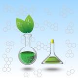 Flaskor för organiclexperiment vektor illustrationer