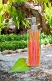 Flaskor för vätsketvål på trä Royaltyfri Fotografi