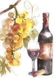 Flaskor och exponeringsglas av vin och sortiment av druvor som isoleras på vit Hand dragen vattenfärgillustration stock illustrationer