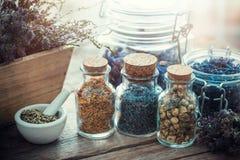 Flaskor och krus av att läka örter, mortel och asken av torra blommor Arkivfoton