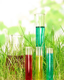 Flasks with colored chemistry liquid Stock Image